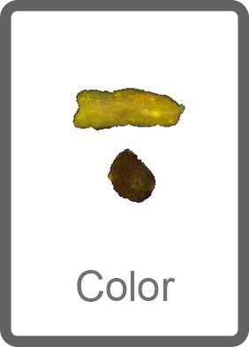 Analyse de la couleur des particules